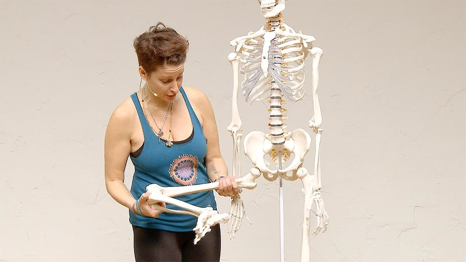 Yoga Anatomy - Anatomical insight on the hip and knee joint