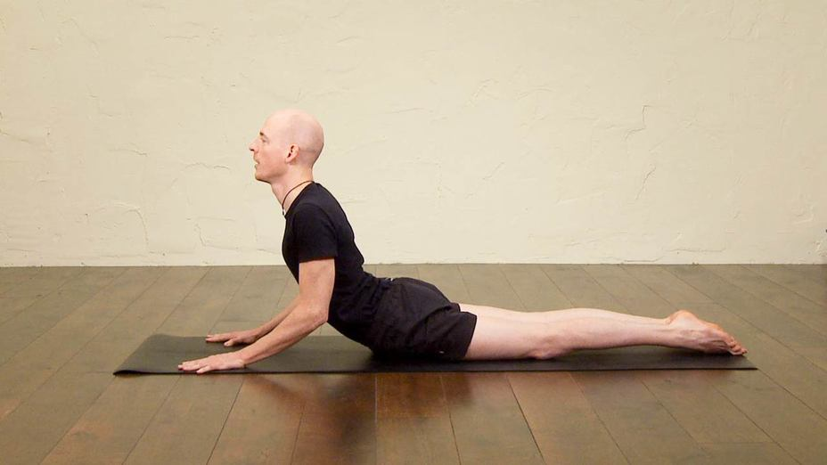 Hatha Yoga For Beginners Part 5